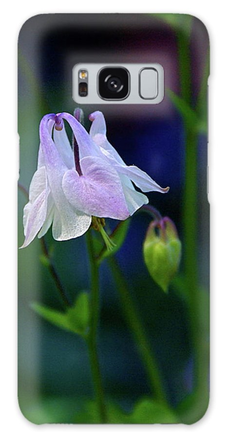 Columbine Galaxy S8 Case featuring the photograph Floral Birds by Byron Varvarigos