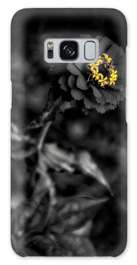Zinnia Galaxy S8 Case featuring the photograph Floral October Zinnia End Of Season Sc 02 Vertical by Thomas Woolworth