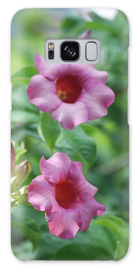 Flores De La Allamanda Galaxy S8 Case featuring the photograph Flores De La Allamanda by Michael Peychich