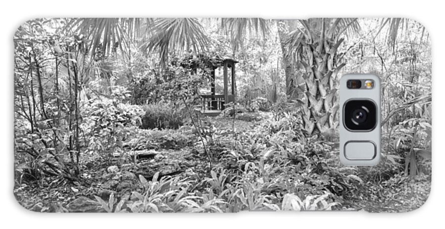 Garden Galaxy S8 Case featuring the photograph Florida Garden Scene_009 by Pat Canova