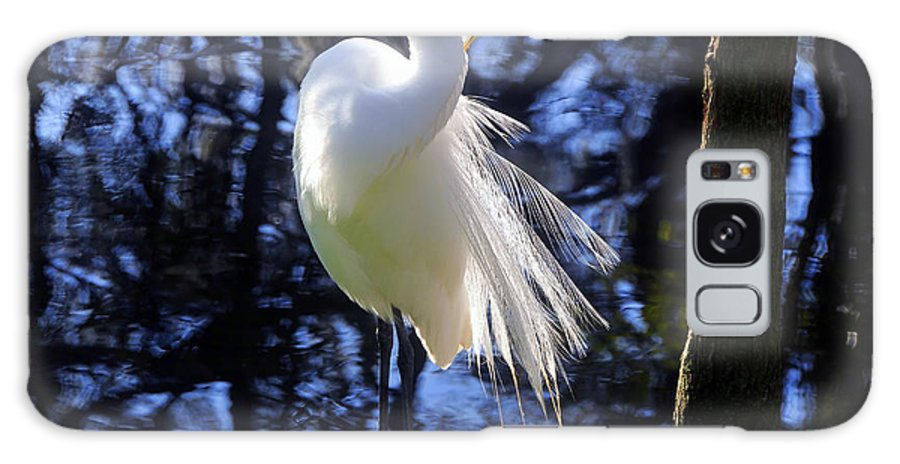 Great Egret Galaxy S8 Case featuring the photograph Florida Living by David Lee Thompson