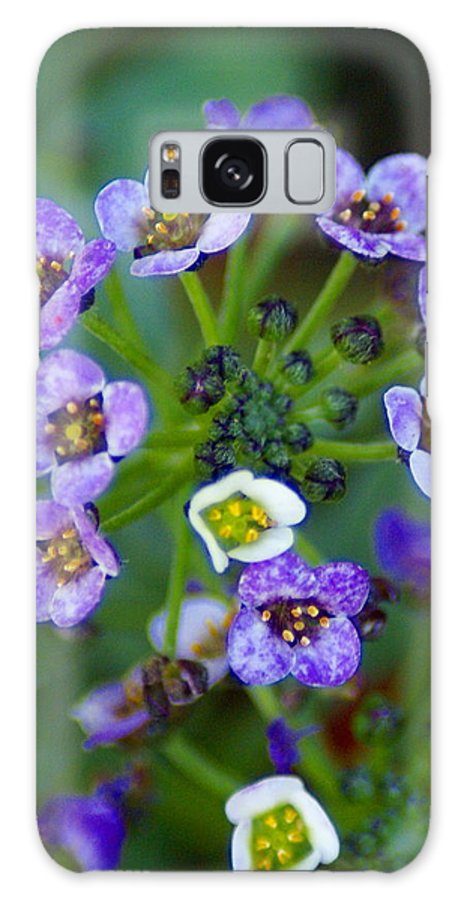 Flowers Galaxy S8 Case featuring the photograph Flower 2 by Ben Upham III