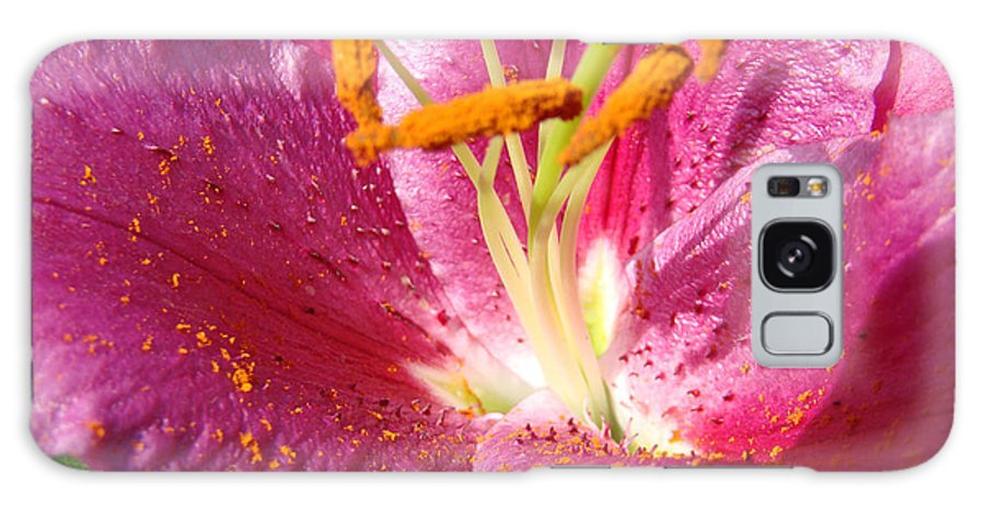 Lily Galaxy S8 Case featuring the photograph Flower Art Prints Pink Orange Lily Flower Giclee Baslee Troutman by Baslee Troutman