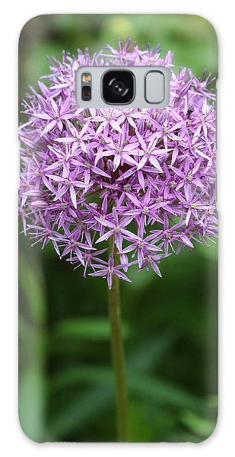 Flower Galaxy S8 Case featuring the photograph Flower Ball by Paul Slebodnick