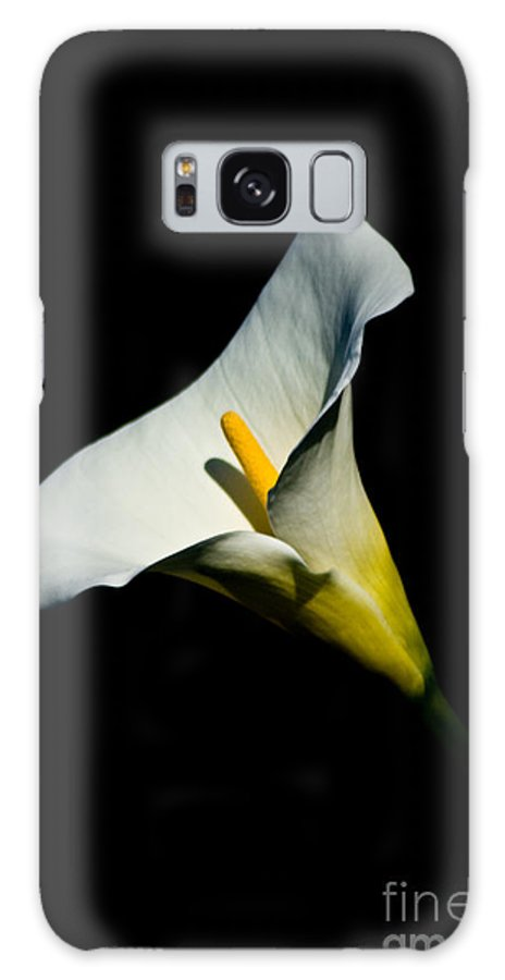 Flower Galaxy S8 Case featuring the photograph Flower by Brenton Woodruff