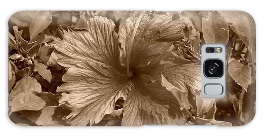 Sepia Galaxy S8 Case featuring the photograph Flower In Sepia by Rob Hans