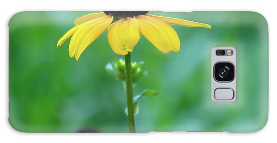 Flower Galaxy S8 Case featuring the photograph Flower by William Miller