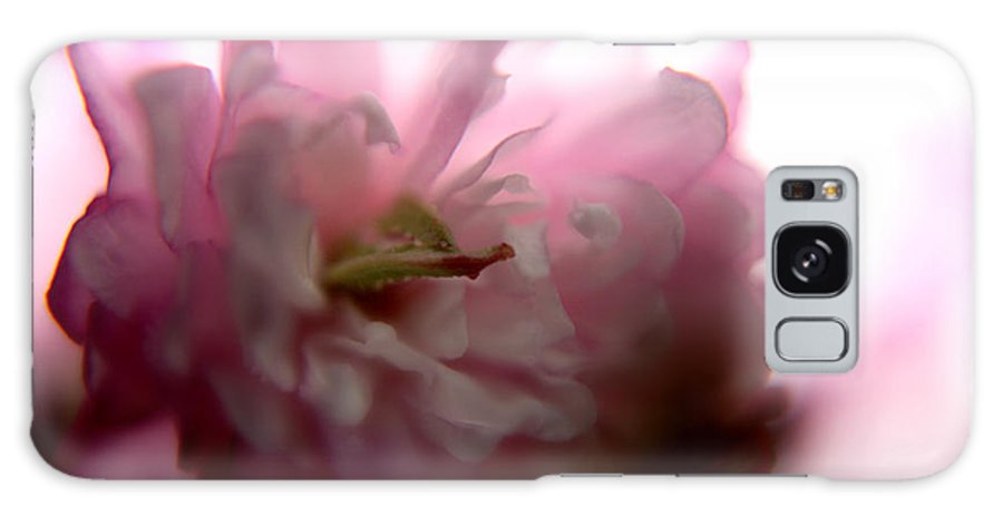 Nature Galaxy S8 Case featuring the photograph Flowering Almond 2011-7 by Robert Morin
