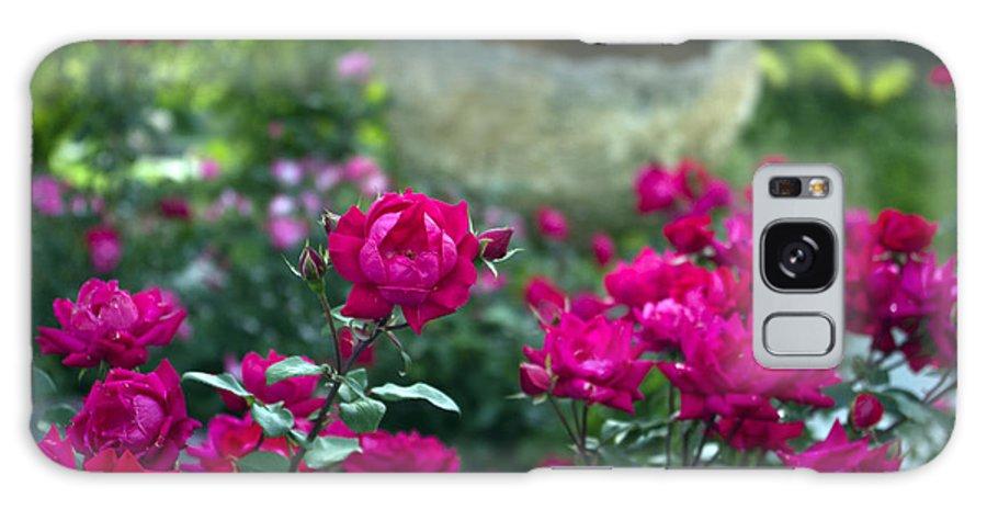 Flowers Galaxy S8 Case featuring the photograph Flowering Landscape by Scott Wyatt