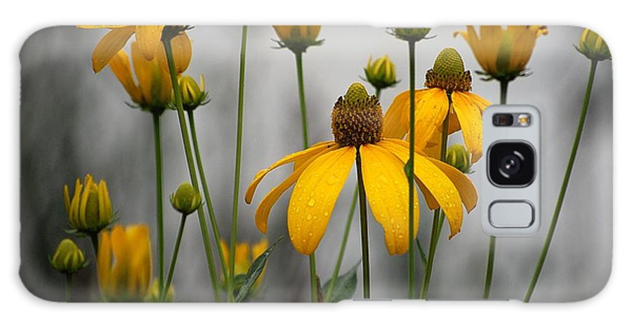 Flowers In The Rain Galaxy Case featuring the photograph Flowers In The Rain by Robert Meanor