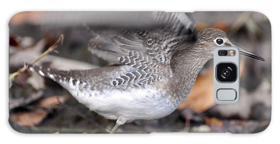 Bird Galaxy S8 Case featuring the photograph Flutter by Glenn Gordon