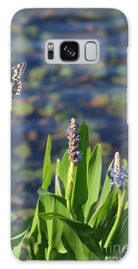 Plants Galaxy S8 Case featuring the photograph Fly Be Free by Jack Norton