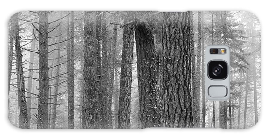 Fog Galaxy S8 Case featuring the photograph Fog In The Pines by Idaho Scenic Images Linda Lantzy