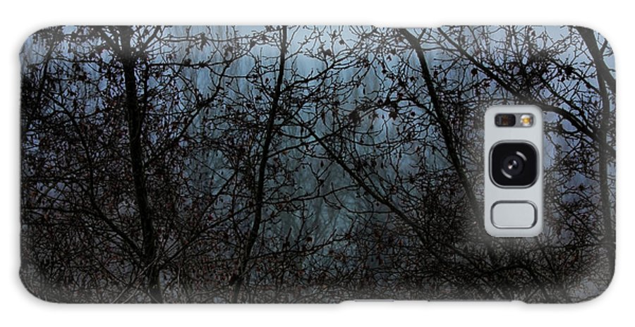 Trees Galaxy S8 Case featuring the photograph Fog In The Trees by Angel Jesus De la Fuente