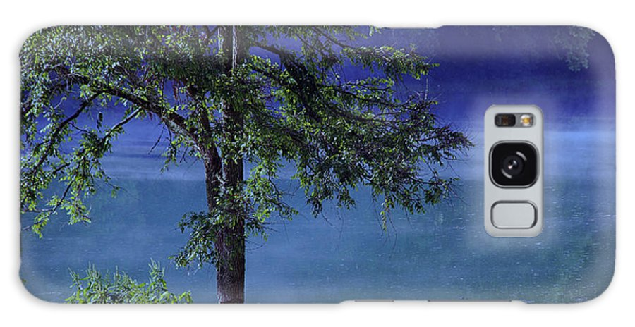 Landscape Galaxy S8 Case featuring the photograph Fog Over The Pond by Susanne Van Hulst