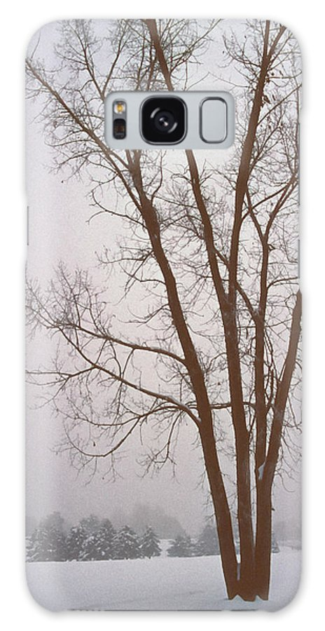 Nature Galaxy Case featuring the photograph Foggy Morning Landscape 13 by Steve Ohlsen