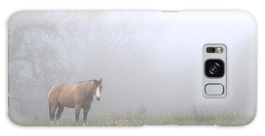 Horse Galaxy S8 Case featuring the photograph Foggy Surprise by Charley Starnes