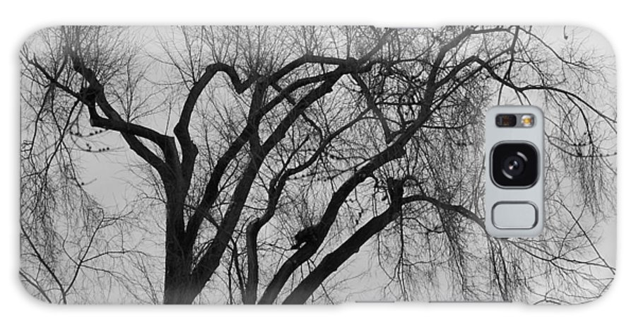 Tree Galaxy S8 Case featuring the photograph Foreboding by Michelle Miron-Rebbe