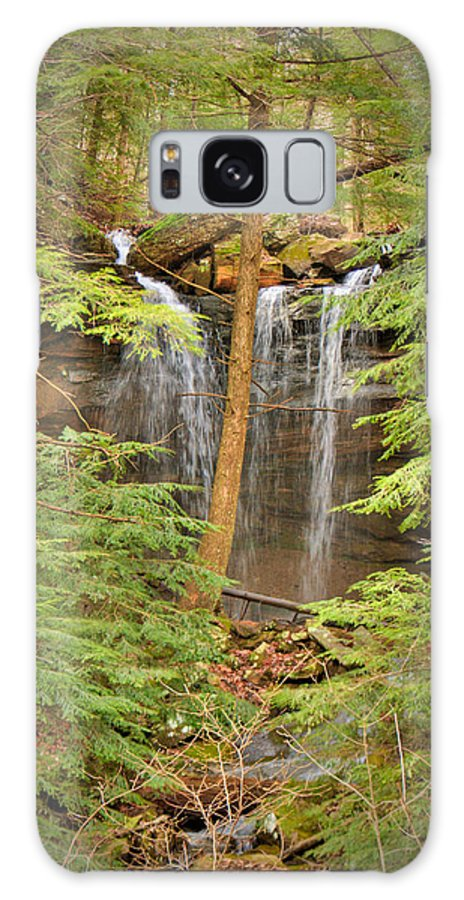 Forest Galaxy S8 Case featuring the photograph Forest Falls by Douglas Barnett