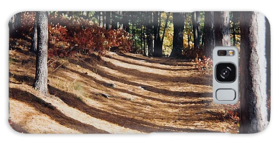 Fall Galaxy Case featuring the photograph Forest Path by Ellen Leigh