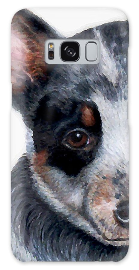 Australian Cattle Dog Galaxy S8 Case featuring the drawing Foster Detail by Kristen Wesch
