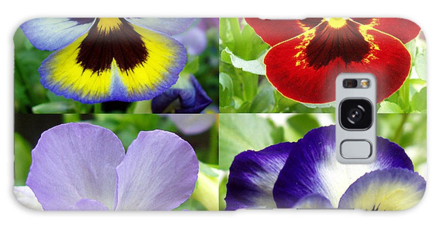 Pansy Galaxy S8 Case featuring the photograph Four Pansies by Nancy Mueller