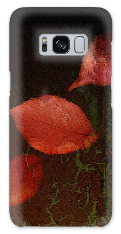 Falling Leaves Galaxy S8 Case featuring the photograph Freefall by Bonnie Bruno