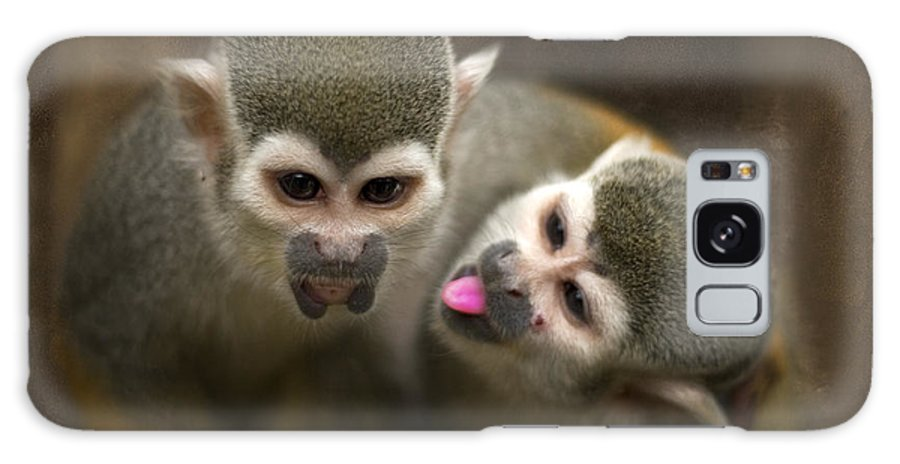 Monkeys Galaxy S8 Case featuring the photograph French Kiss by Angel Ciesniarska