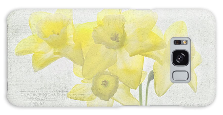 Daffodils Galaxy S8 Case featuring the photograph French Market Series C by Rebecca Cozart
