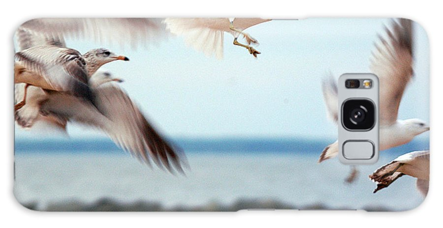 Clay Galaxy Case featuring the photograph Frenzy by Clayton Bruster