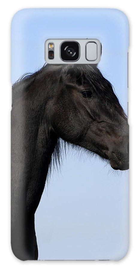 Friesian Galaxy Case featuring the photograph Friesian Stallion by Michael Mogensen