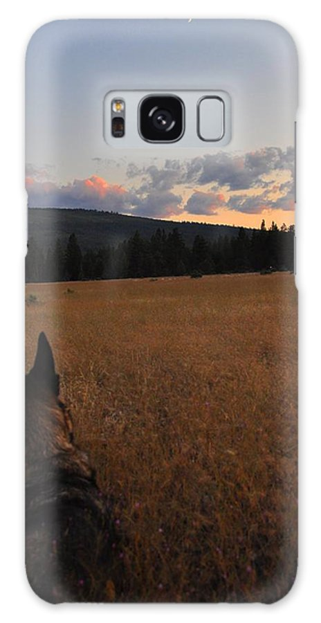Sunset Galaxy S8 Case featuring the photograph Frolic In The Grass by Noah Cole