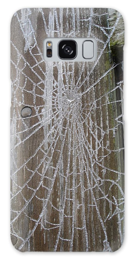 Winter Galaxy S8 Case featuring the photograph Frosty Web by Susan Baker