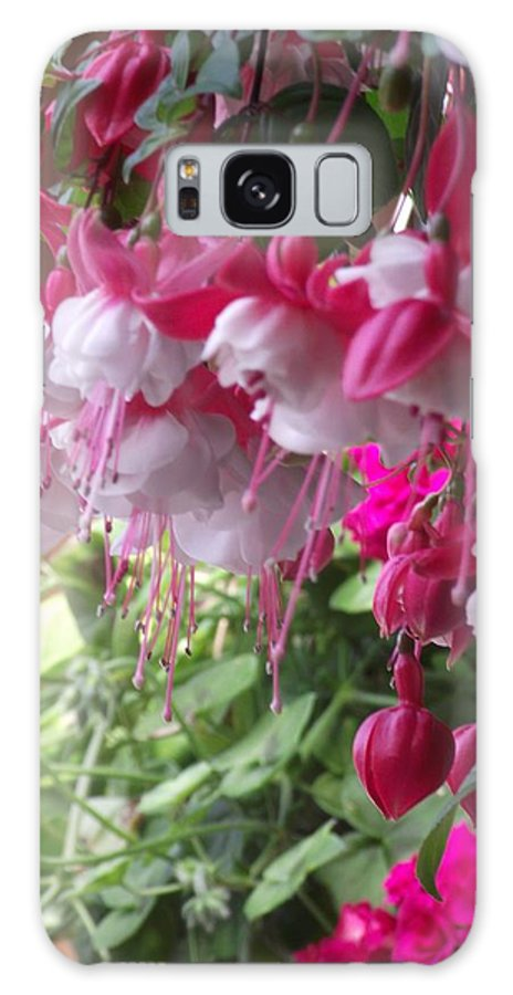 Flower Galaxy S8 Case featuring the photograph Fuschia by Diane Songstad