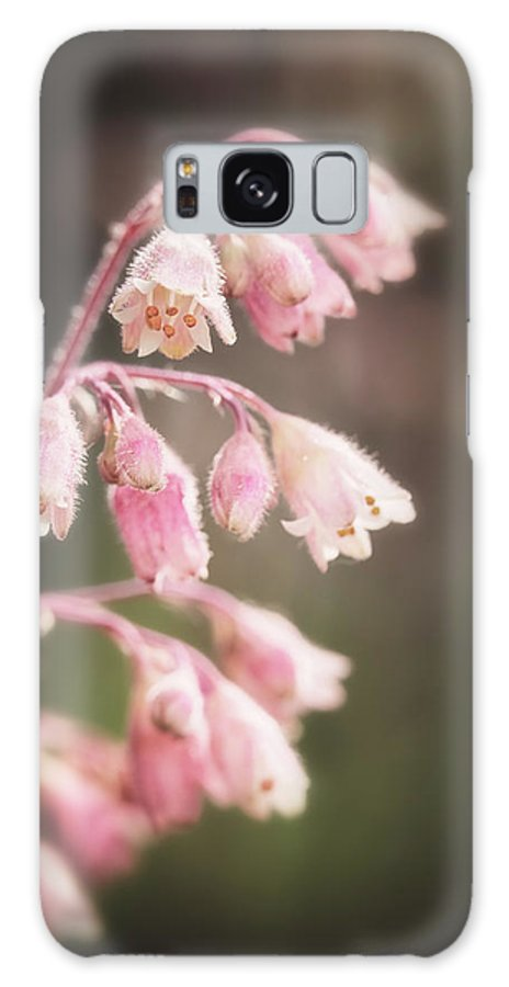 Heuchera Galaxy S8 Case featuring the photograph Fuzzy Bells by Caitlyn Grasso