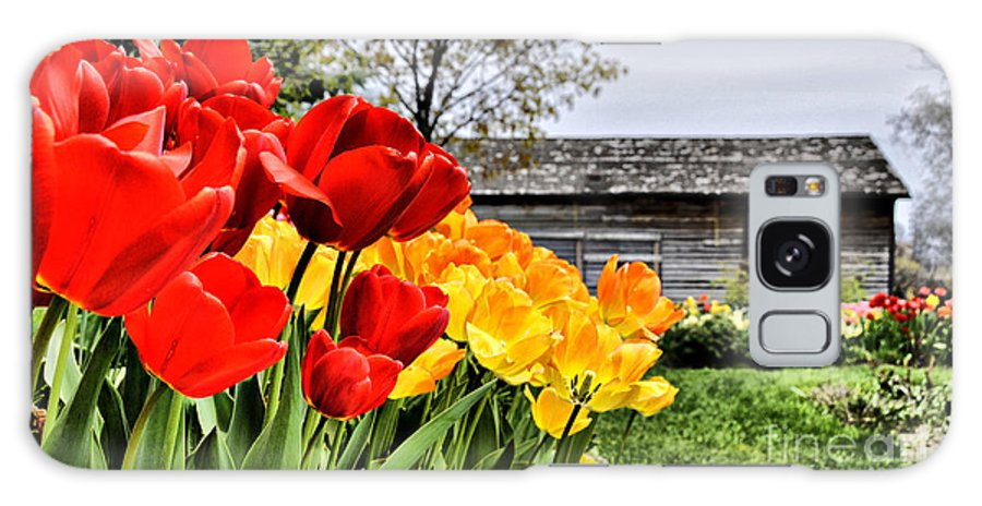 Galaxy S8 Case featuring the photograph Garden Tulips On A Cloudy Day by Elaine Manley