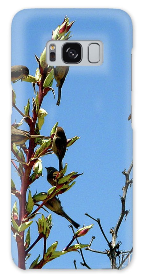 Birds Galaxy S8 Case featuring the photograph Gathering by Amy Strong