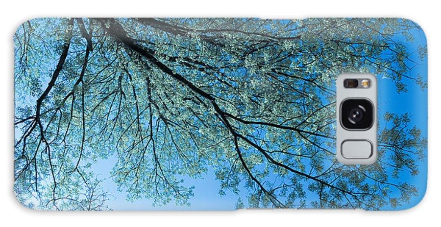 Scenic Galaxy S8 Case featuring the photograph Gazing by Scott Wyatt