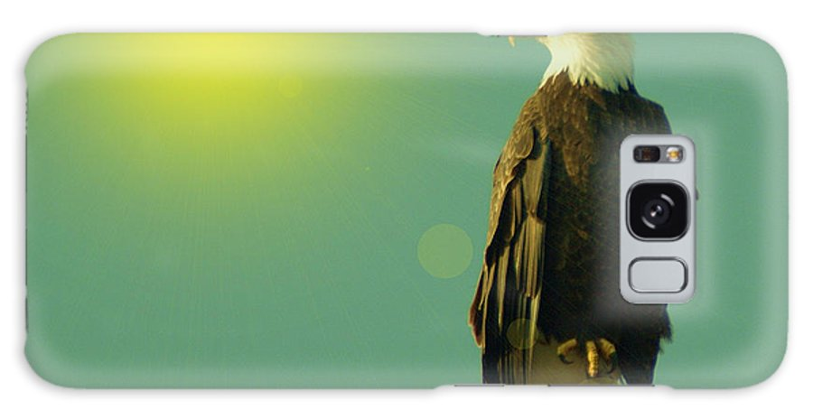 Eagles Galaxy S8 Case featuring the photograph Gazing Sunward by Jeff Swan