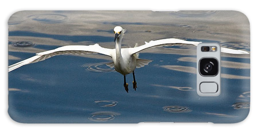 Snowy Egret Galaxy S8 Case featuring the photograph Gear Down by Christopher Holmes