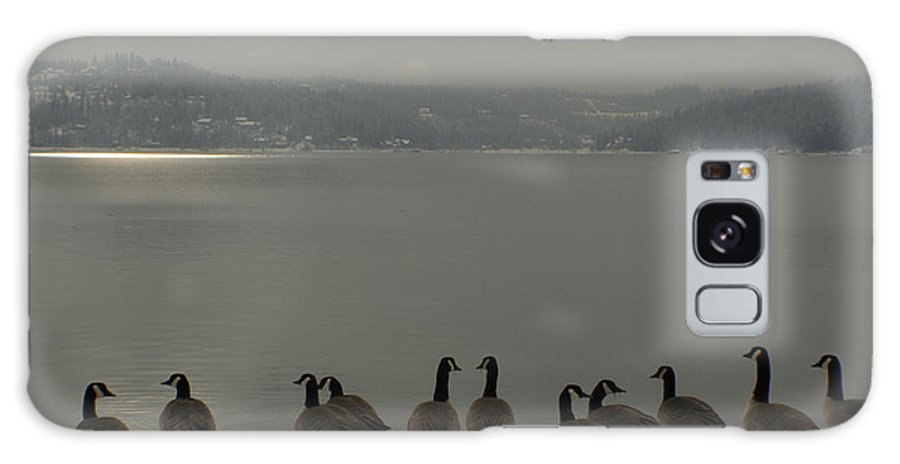 Geese Galaxy S8 Case featuring the photograph Geese On The Edge by Idaho Scenic Images Linda Lantzy