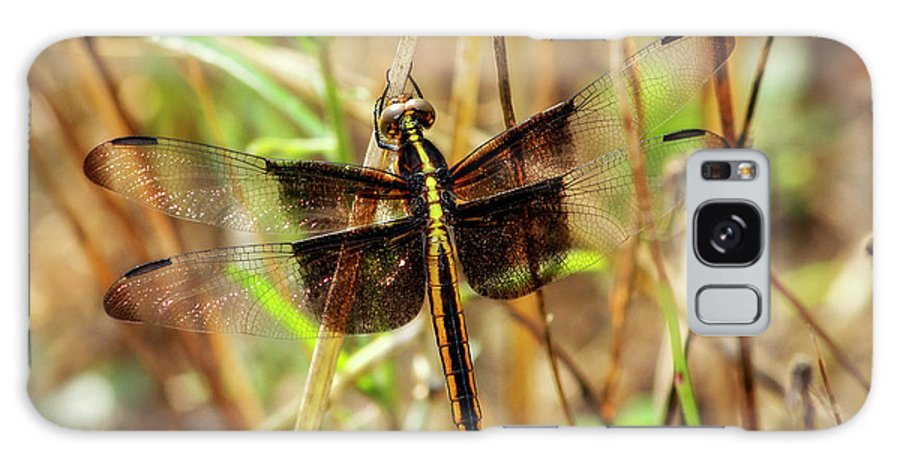 Reid Callaway Green Dragonflies Galaxy S8 Case featuring the photograph Georgia On My Mind Ray Charles Dragonfly Art by Reid Callaway