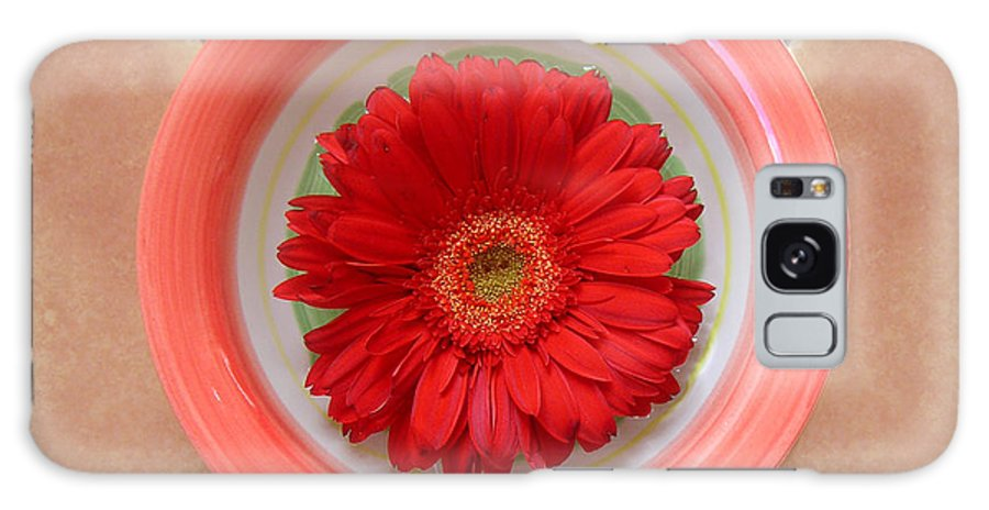 Nature Galaxy Case featuring the photograph Gerbera Daisy - Bowled On Tile by Lucyna A M Green