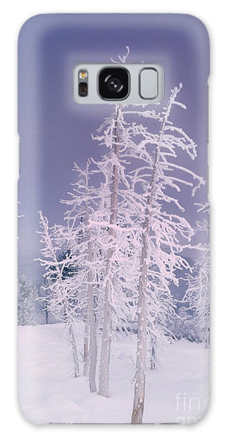 North America Galaxy S8 Case featuring the photograph Ghost Trees Yellowstone National Park by Dave Welling