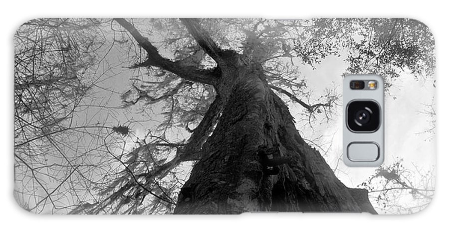 Ghostly Galaxy S8 Case featuring the photograph Ghostly Tree by David Lee Thompson