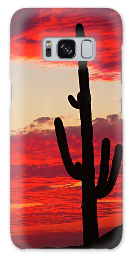 Sunset Galaxy S8 Case featuring the photograph Giant Saguaro Southwest Desert Sunset by James BO Insogna