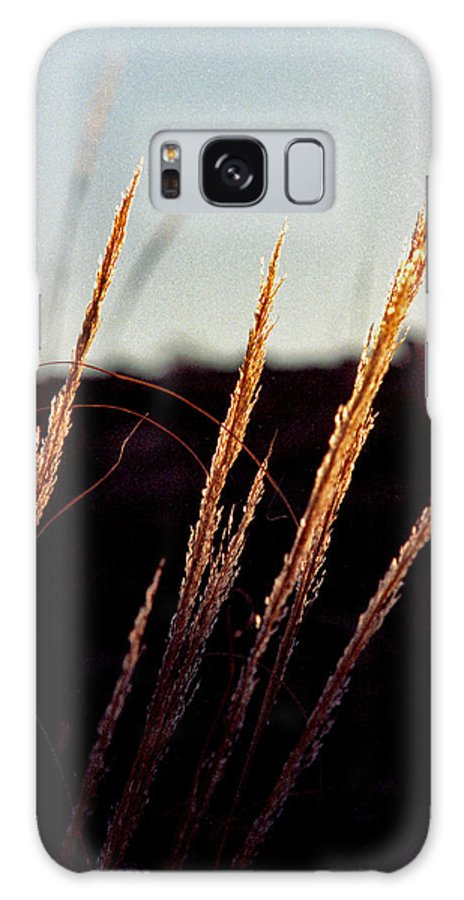 Grass Galaxy Case featuring the photograph Glistening Grass by Randy Oberg