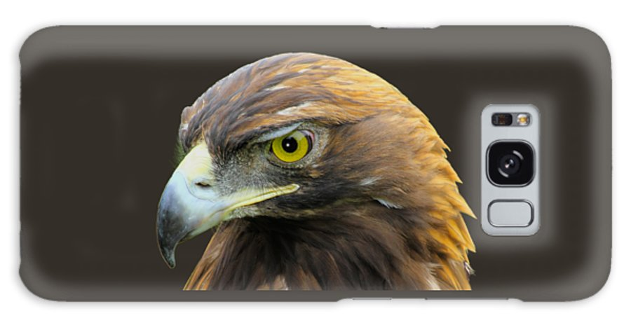 Golden Eagle Galaxy S8 Case featuring the photograph Golden Eagle by Shane Bechler