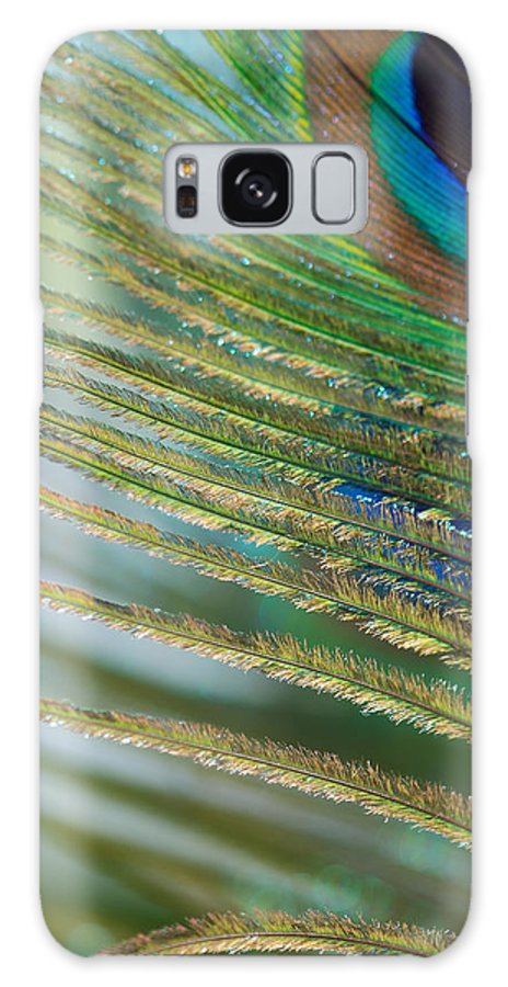 Golden Galaxy S8 Case featuring the photograph Golden Feather by Lisa Knechtel