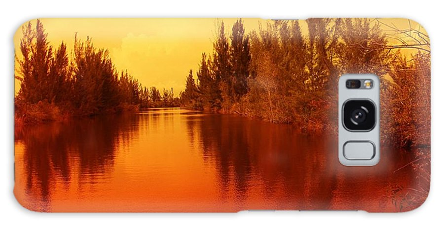 Tree Galaxy Case featuring the photograph Golden Fire by Florene Welebny